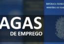Confira as principais vagas de emprego ofertadas em Manaus